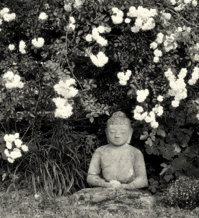 Buddha meditiert entspannt im Garten